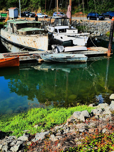 Noyo Harbor. Photo gallery courtesy of Petra Annastasia. Thanks, Petra!